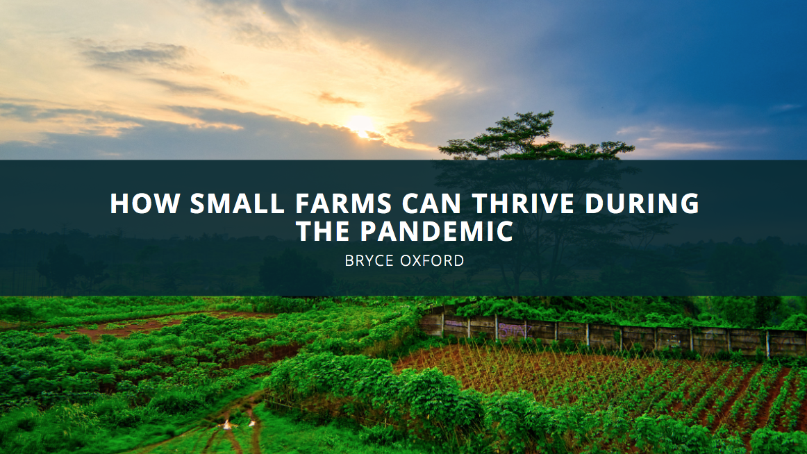 How Small Farms Can Thrive During the Pandemic, According to Bryce Oxford
