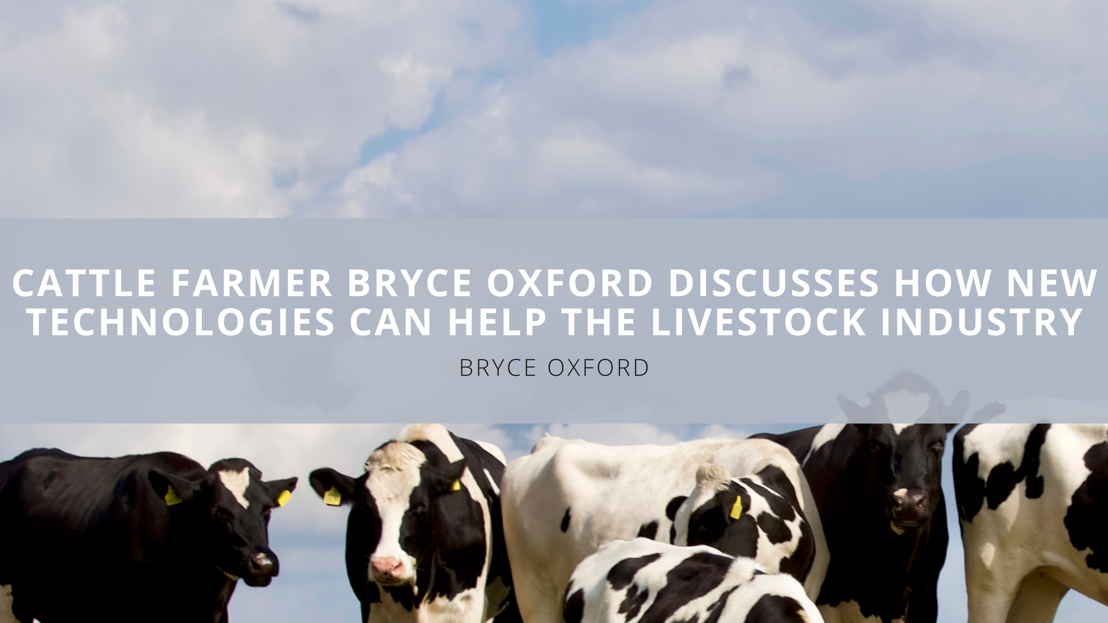 Cattle Farmer Bryce Oxford Discusses How New Technologies Can Help the Livestock Industry